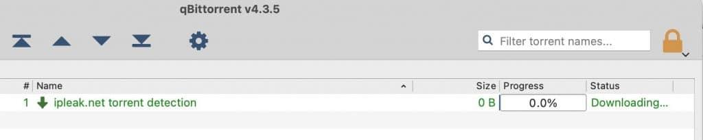 Verify that qBittorrent is downloading the ipleak.net test torrent.